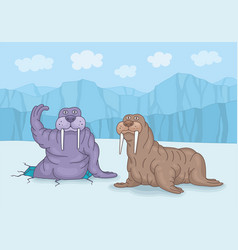 two walruses on ice vector image