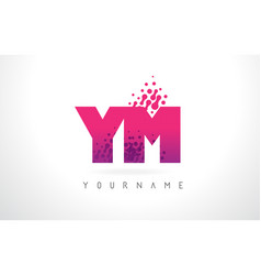 ym y m letter logo with pink purple color and vector image