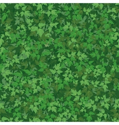 Seamless background maple leaves vector image vector image