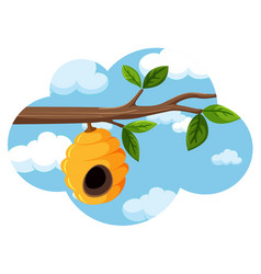 Beehive hanging from a tree branch sky backgroubd vector