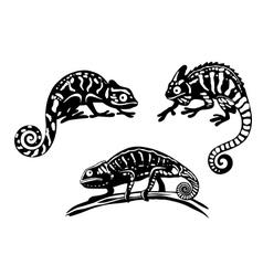 Chameleons set vector