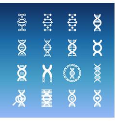 Dna spiral icons - medicinal and biology vector