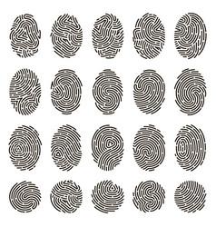fingerprint identification biometric human vector image