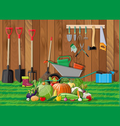 harvest with vegetables and gardening equipment vector image