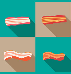 Set of smoked bacon and fresh bacon vector