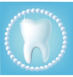 Tooth on a blue background vector