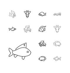 13 fauna icons vector