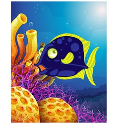 A fish near the beautiful corals vector image