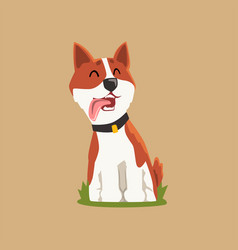colorful welsh corgi on green lawn adorable puppy vector image