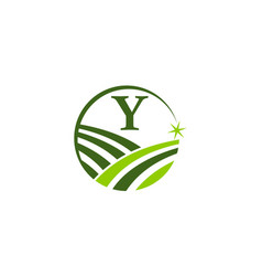 Green project solution center initial y vector