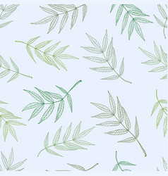 seamless spring pattern from ashberry leaves vector image