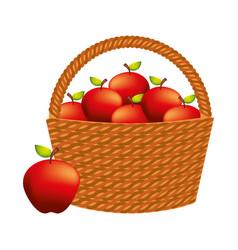 wicker basket fresh fruit nature apples vector image