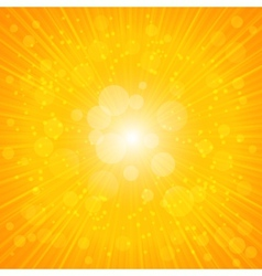 Yellow Summer Background vector image