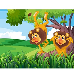 A tree with two playful lions vector