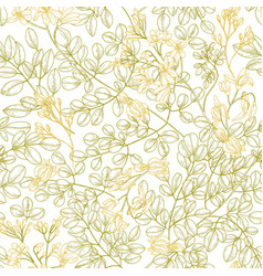 Botanical seamless pattern with moringa oleifera vector