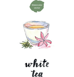 Cup of tea with flower and petals tea vector