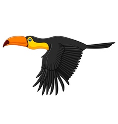 Cute toucan bird cartoon flying vector image