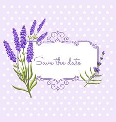 vintage floral frame with lavender in provence vector image