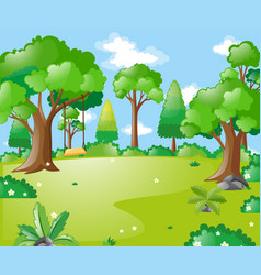 park scene with many trees and swing vector image