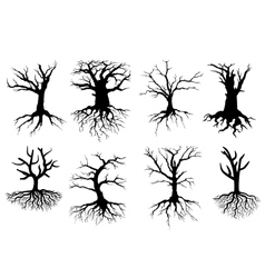 Bare tree silhouettes with roots vector image