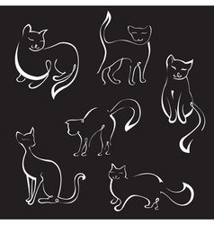 cat sketches vector image vector image