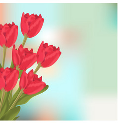 spring text with red tulips flower bouquet vector image vector image