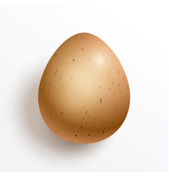 a realistic chicken egg isolated on white vector image