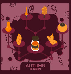 autumn color concept isometric icons vector image