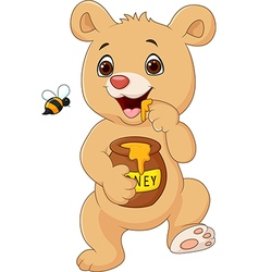 Cute baby bear holding honey pot isolated vector image