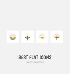 Flat icon fiber set of flower fluffy fiber and vector