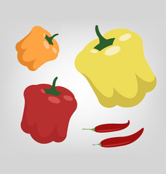 Flat peppers vector