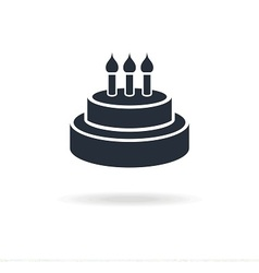 icon cake with candles vector image