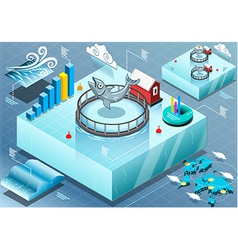 Isometric Infographic of Sea Farmed Fish vector image