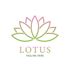lotus flower logo template vector image