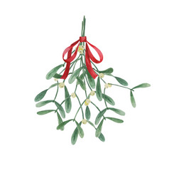Mistletoe watercolor bouquet vector