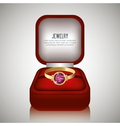 ring in box gift isolated vector image