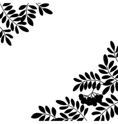 Rowanberry background silhouette vector