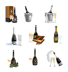 set bottles with closed and opened champagne vector image