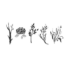 tree branches flowers and plants set monochrome vector image