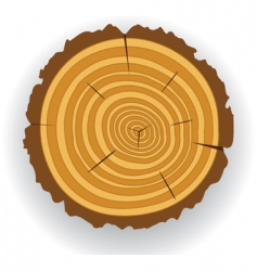 Wooden log cut vector