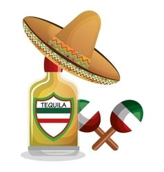 bottle tequila maraca and hat mexican design vector image