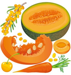 Carotene products set vector