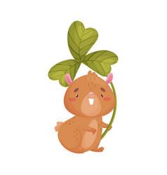 Cartoon hamster with clover vector