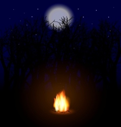 Flame in night vector