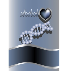 heart and DNA vector image