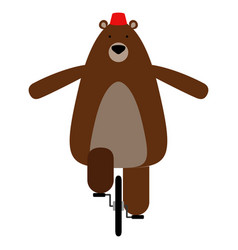 isolated circus bear vector image