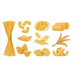 Realistic macaroni italian dry wheat food vector