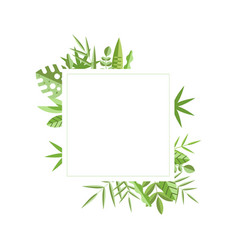 square frame with green leaves on background vector image