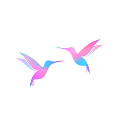 colorful birds on white background vector image