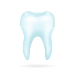 Tooth on a white background vector image vector image